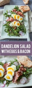 Make a Dandelion Salad with Dandelion greens, Eggs and Bacon for an easy spring dinner! Packed full of vitamins and nutrients! | www.vibrantplate.co