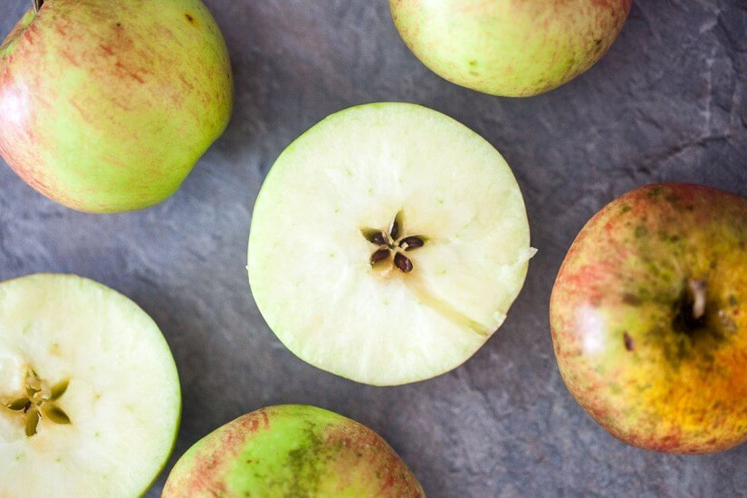 Vibrant Plate - Food & Photography Blog