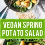 A simple vegan Spring Potato Salad with a delicious Balsamic Vinaigrette, the perfect use of new potatoes! | www.vibrantplate.com