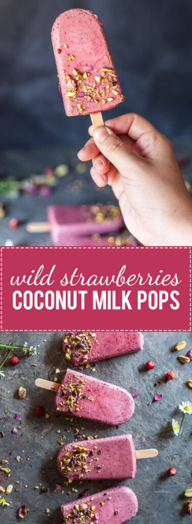 These Wild Strawberries Coconut Milk Popsicles are light, delicious and a real summer treat. Vegan and gluten-free!   www.vibrantplate.com