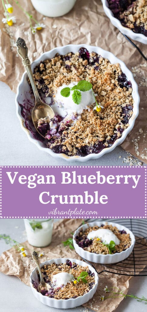 Vegan Blueberry Crumble, made with blueberries and a crunchy crumble topping, just the perfect plant-based summer treat.   Vibrant Plate