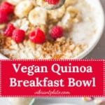 Vegan Quinoa Breakfast Bowl is an easy to make, healthy and filling breakfast, ready in just 15 minutes. Perfect for meal-prep! | Vibrant Plate