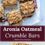 Aronia Oatmeal Crumble Bars