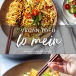 Vegan Tofu Lo Mein