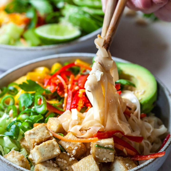 Vegan Spring Roll Noodle Bowl Close-up